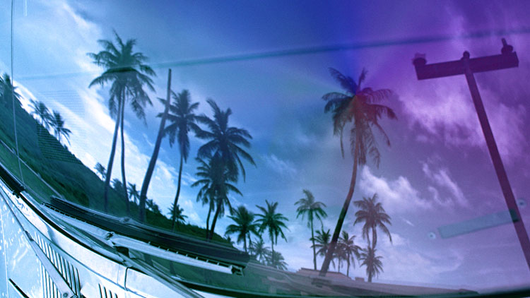 イメージスライド4 フロントガラスに映る椰子の木